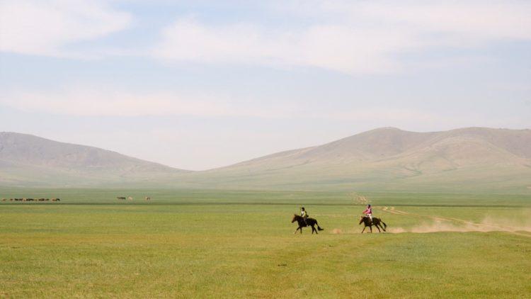 モンゴルの草原を疾走する2頭の馬の写真