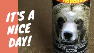 北米産の熊避けスプレーの写真