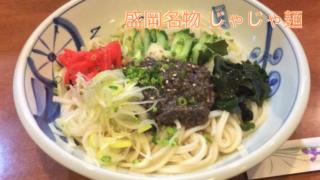 お店で食べた岩手県盛岡市の名物じゃじゃ麺の写真