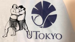 東京大学相撲部をイメージしたオリジナルマーク